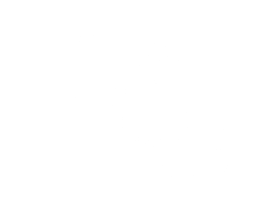 Strategy_icon1