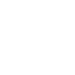 VR_icon1